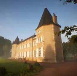 Château Neuville Les Decize - 15 personnes - location vacances  n°2195