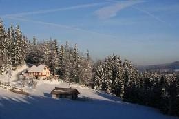 Chalet Prémanon - 5 personnes - location vacances  n°2345