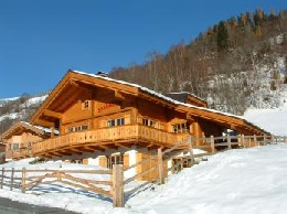 Chalet Bramberg - 12 people - holiday home  #2378