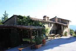 Ferme Fratticiola Selvatica - 18 personnes - location vacances  n°2408