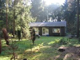Maison Zeegse - 4 personnes - location vacances  n°3064