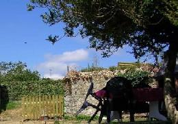 House Pont L'abbé D'arnoult  - 7 people - holiday home  #429