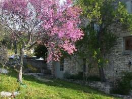 Gite Buoux - 7 personnes - location vacances  n°4647
