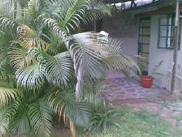 Maison 4 personnes Bambous - location vacances  n°4942