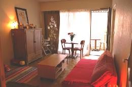 Appartement 4 personnes Toulouse - location vacances  n°5221