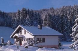 Appartement Xonrupt Longemer - Gérardmer - 4 personnes - location vacances  n°5489