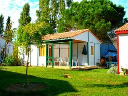 Gite Carcassonne - 7 people - holiday home  #5668