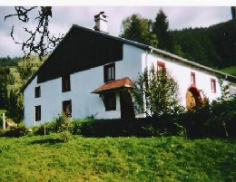 Farm Rupt Sur Moselle - 8 people - holiday home  #5742