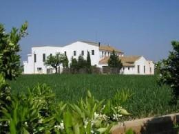 Gite Benaguasil/valencia - 12 personnes - location vacances  n°6484