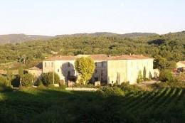 Château Malemort Du Comtat - 4 personnes - location vacances  n°6521