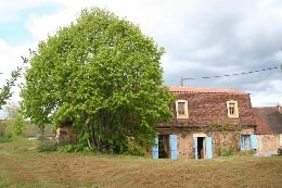 Farm Au Bugue - 7 people - holiday home  #6700