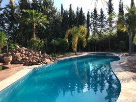 Maison Marrakech - 15 personnes - location vacances  n°6802