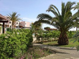 Appartement St Cyprien Plage - 4 personnes - location vacances  n°6831