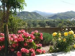 Ferme Almeria - 4 personnes - location vacances  n°6842