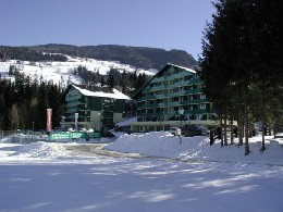 Appartement Schladming - 4 personnes - location vacances  n°6864