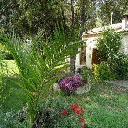 Chambre d'hôtes Aubais - 3 personnes - location vacances  n°7180