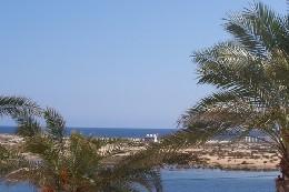 Appartement Cabanas De Tavira - 4 Personen - Ferienwohnung N°7295