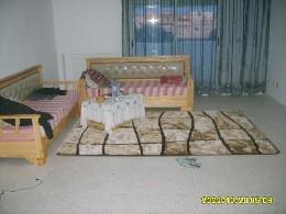Appartement Monastir - 4 personen - Vakantiewoning  no 7770