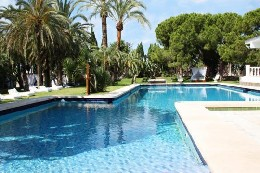 Farm Alicante - 30 people - holiday home  #8150