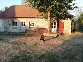 Gite Gannay Sur Loire - 6 people - holiday home  #8174