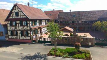 Gite Meistratzheim - 9 personnes - location vacances  n°8341