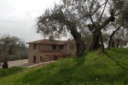 Maison Perugia - 7 personnes - location vacances  n°8682