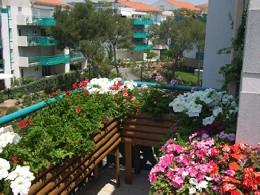 Appartement 6 personnes Saint-raphaël - location vacances  n°8819