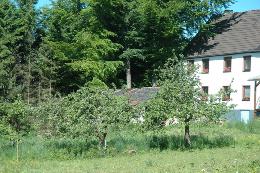 Maison Kall-benenberg - 12 personnes - location vacances  n°9274