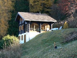 Chalet Haute-nendaz - 8 people - holiday home  #9693