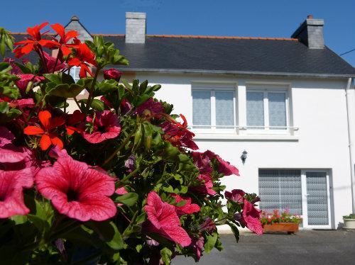 Maison Pleyben - 2 personnes - location vacances  n°22006