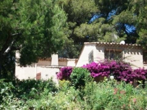 House in Carqueiranne - Vacation, holiday rental ad # 22042 Picture #2