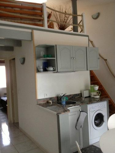 Appartement Borgo - 6 personnes - location vacances  n°22615
