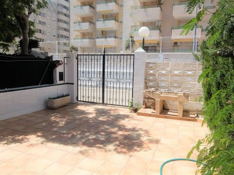 in Gandia - Vacation, holiday rental ad # 22676 Picture #7