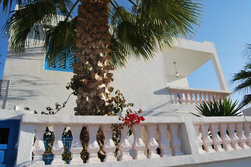 Maison Djerba Midoun - 10 personnes - location vacances  n°22692