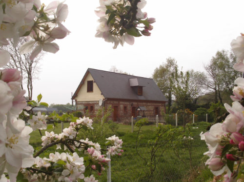 Gite Bec De Mortagne - 6 people - holiday home  #22994