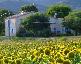 Boerderij Gaubert - Digne Les Bains - 4 personen - Vakantiewoning  no 22855