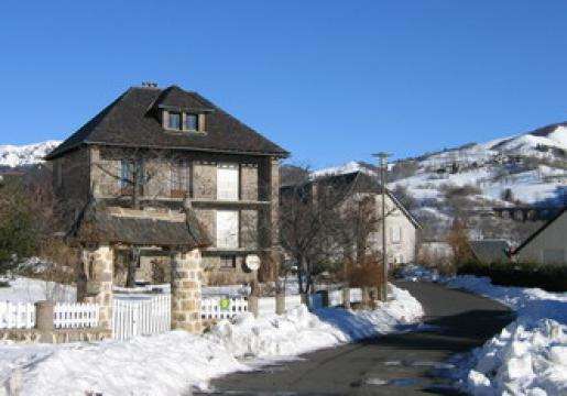 Gite in SAINT JACQUES DES BLATS - Vacation, holiday rental ad # 23142 Picture #1