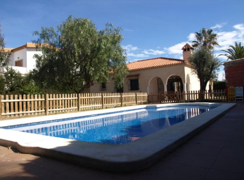 Farm Torrevieja - 8 people - holiday home  #23520