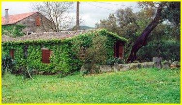 Maison Sartene - 4 personnes - location vacances  n°23635