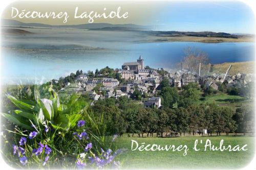 Studio Laguiole - 4 personnes - location vacances  n°23890