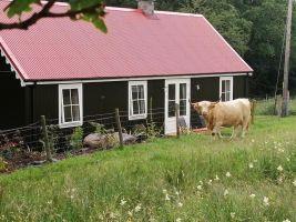 Huis Barcaldine - 4 personen - Vakantiewoning  no 23599