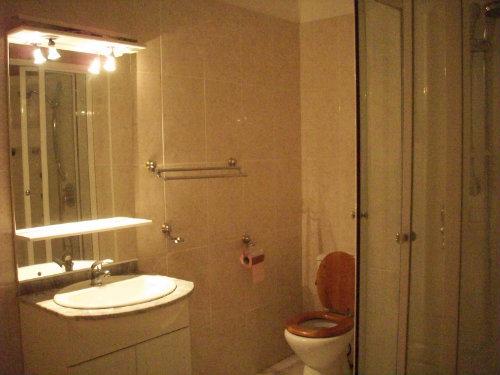 Chambre d'hôtes Albi - 12 personnes - location vacances  n°24120