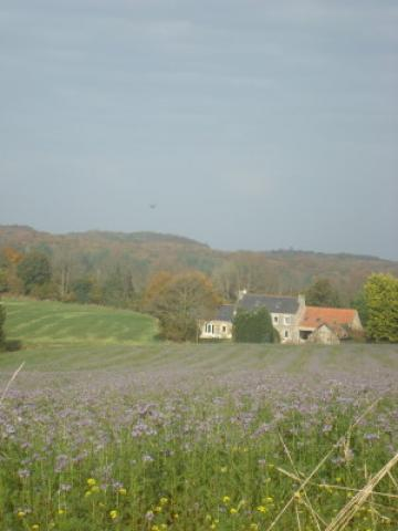 Plouigneau -    access for disabled