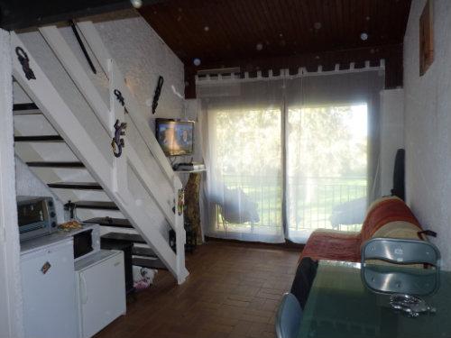 Studio Calcatoggio - 4 personnes - location vacances  n°24405