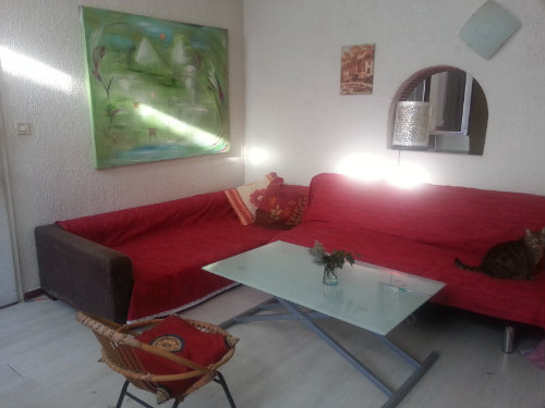 House in Montpellier - Vacation, holiday rental ad # 25771 Picture #1