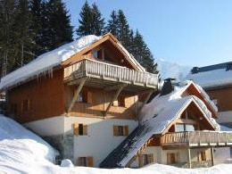 Chalet Oz-en-oisans - 20 people - holiday home  #25417