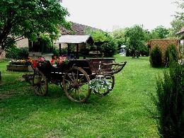 Bauernhof Bussu - 6 Personen - Ferienwohnung N°25636
