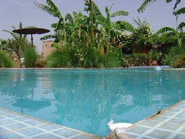 Gite Marrakech - 12 personnes - location vacances  n°25981