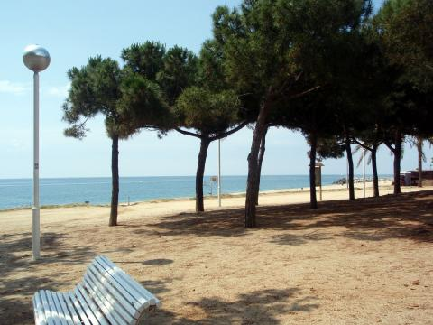 Flat in Mataro - Vacation, holiday rental ad # 26397 Picture #5