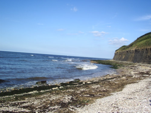 Studio in Port en Bessin-Huppain - Vacation, holiday rental ad # 26979 Picture #4